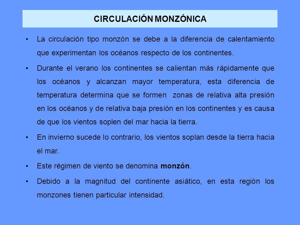 CIRCULACIÓN MONZÓNICA