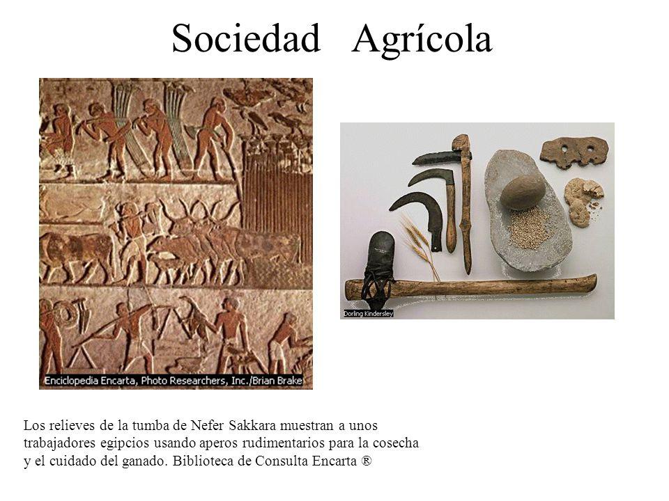 Sociedad Agrícola