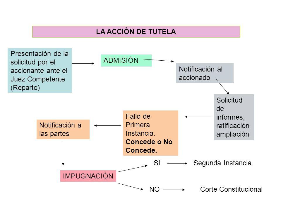 LA ACCIÒN DE TUTELA Presentación de la solicitud por el accionante ante el Juez Competente (Reparto)
