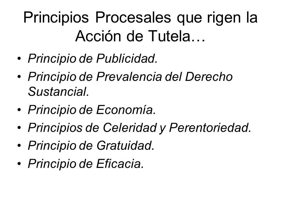Principios Procesales que rigen la Acción de Tutela…