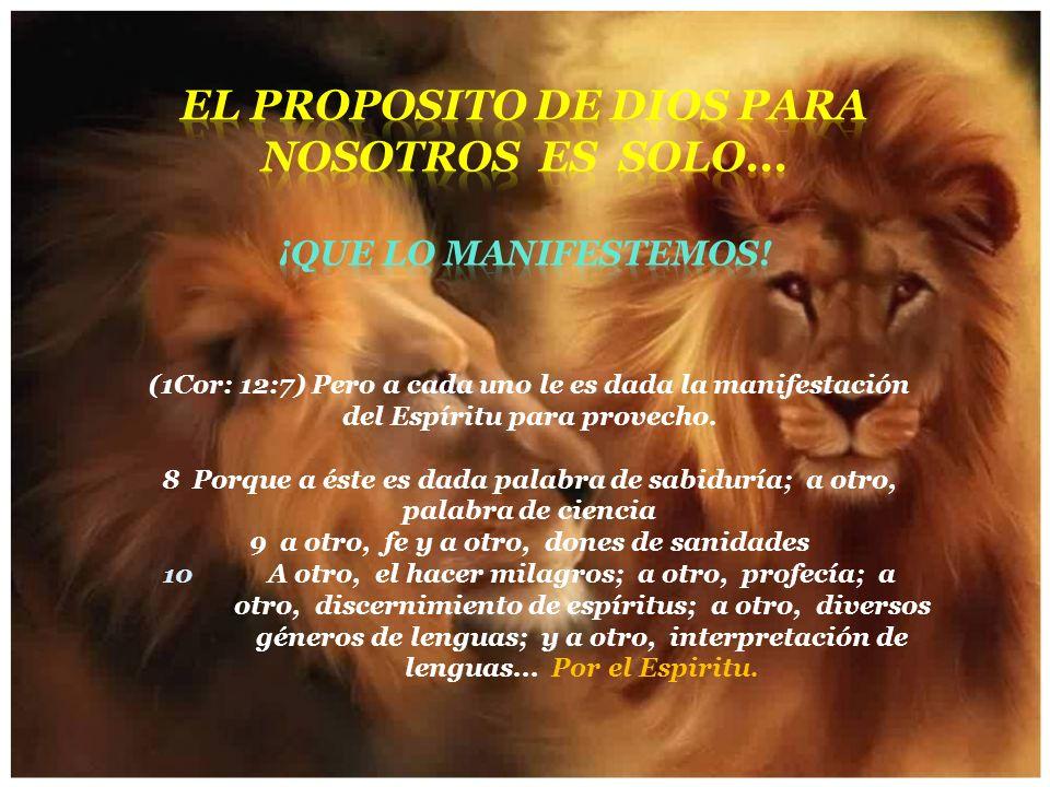 El proposito de Dios para nosotros es SOLO... ¡Que lo manifestemos!