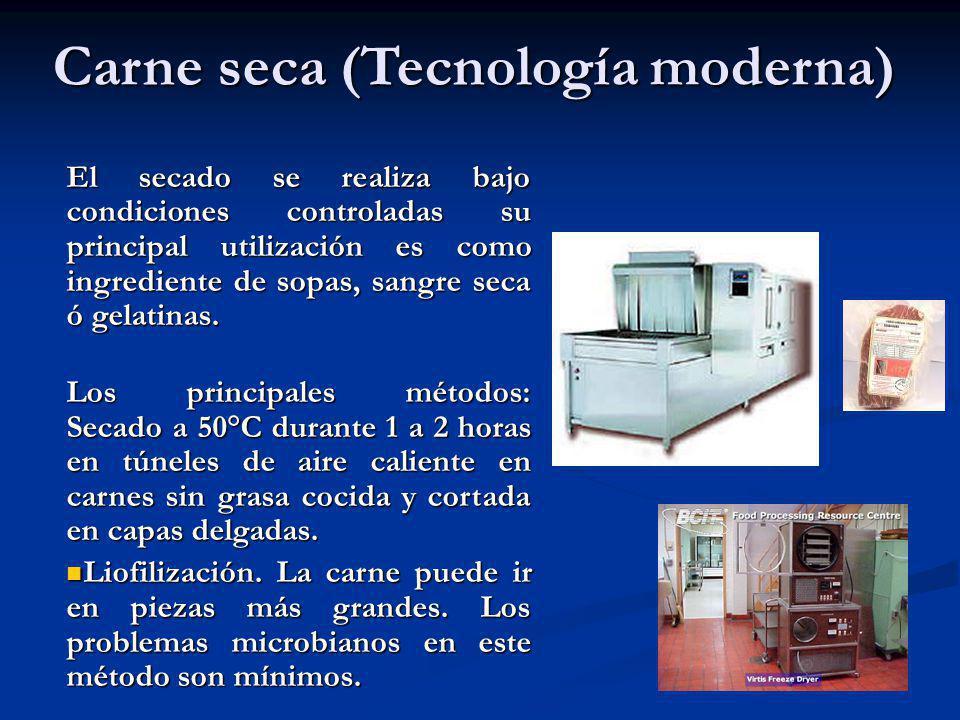 Carne seca (Tecnología moderna)