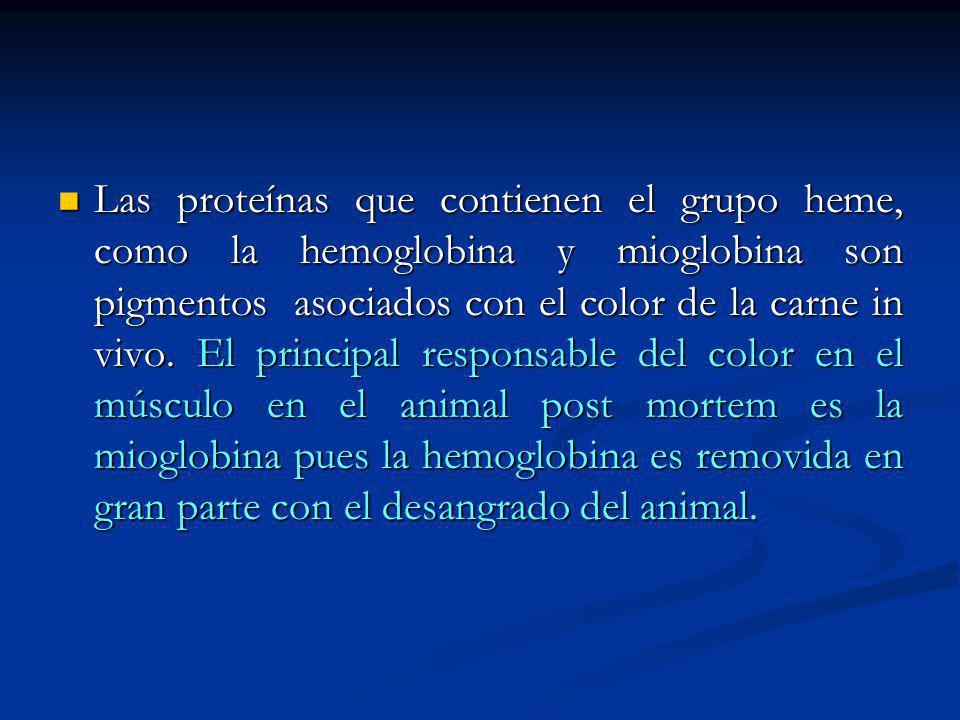 Las proteínas que contienen el grupo heme, como la hemoglobina y mioglobina son pigmentos asociados con el color de la carne in vivo.
