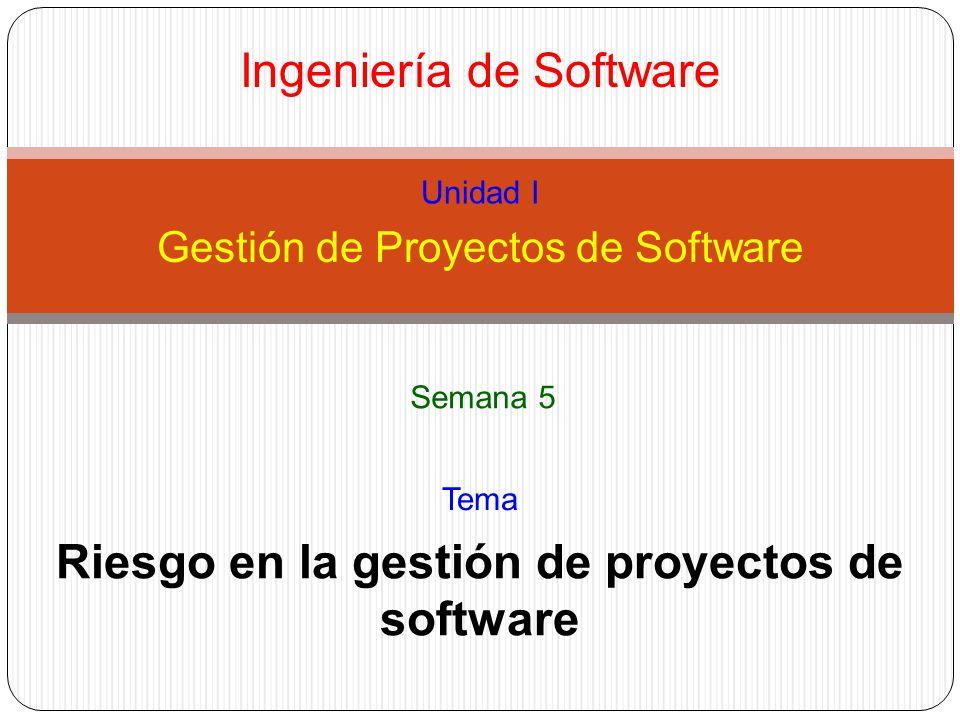 Riesgo en la gestión de proyectos de software