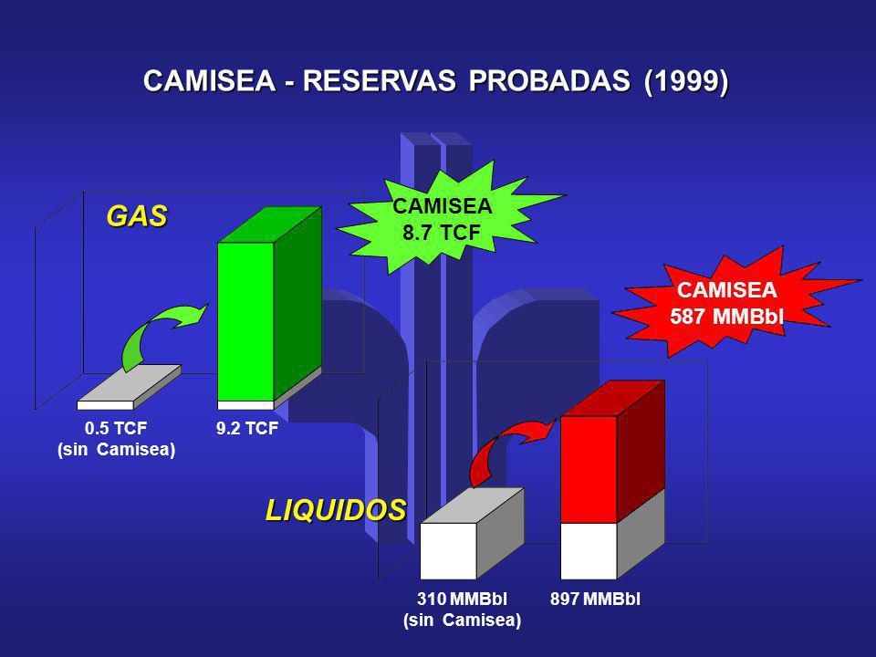 CAMISEA - RESERVAS PROBADAS (1999)