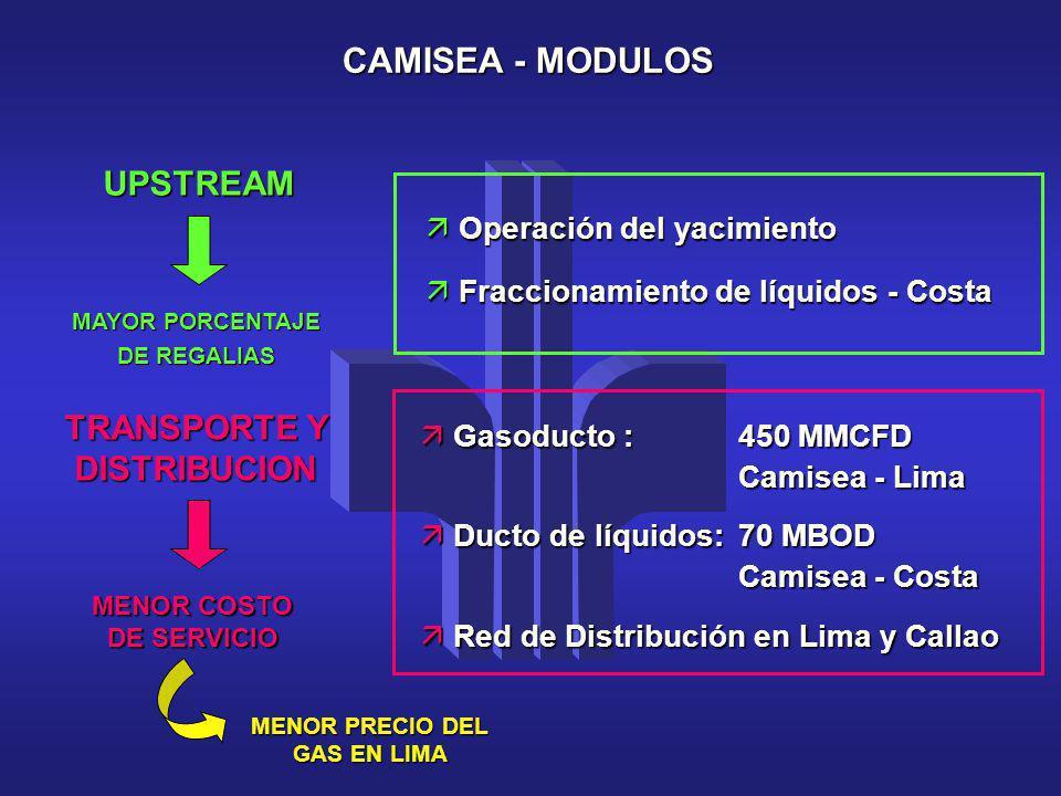 CAMISEA - MODULOS UPSTREAM TRANSPORTE Y DISTRIBUCION