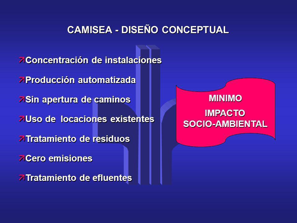 CAMISEA - DISEÑO CONCEPTUAL