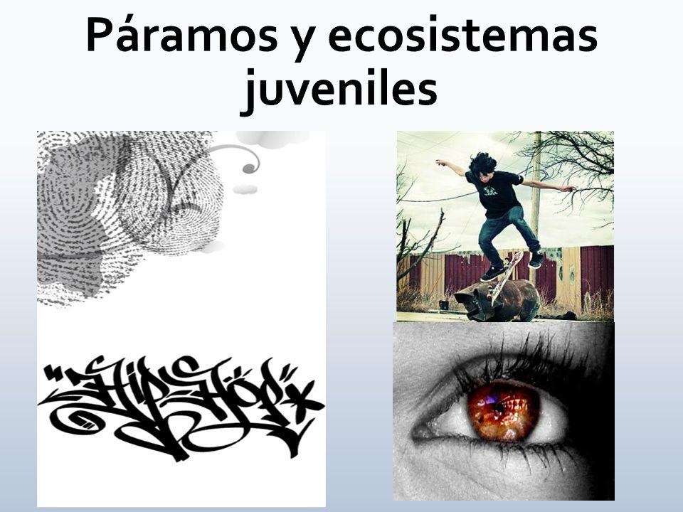 Páramos y ecosistemas juveniles