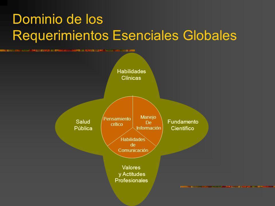 Dominio de los Requerimientos Esenciales Globales