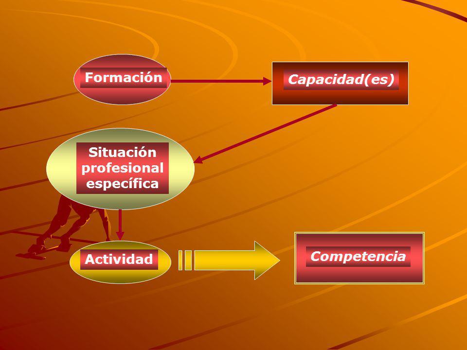 Formación Capacidad(es) Situación profesional específica Actividad Competencia