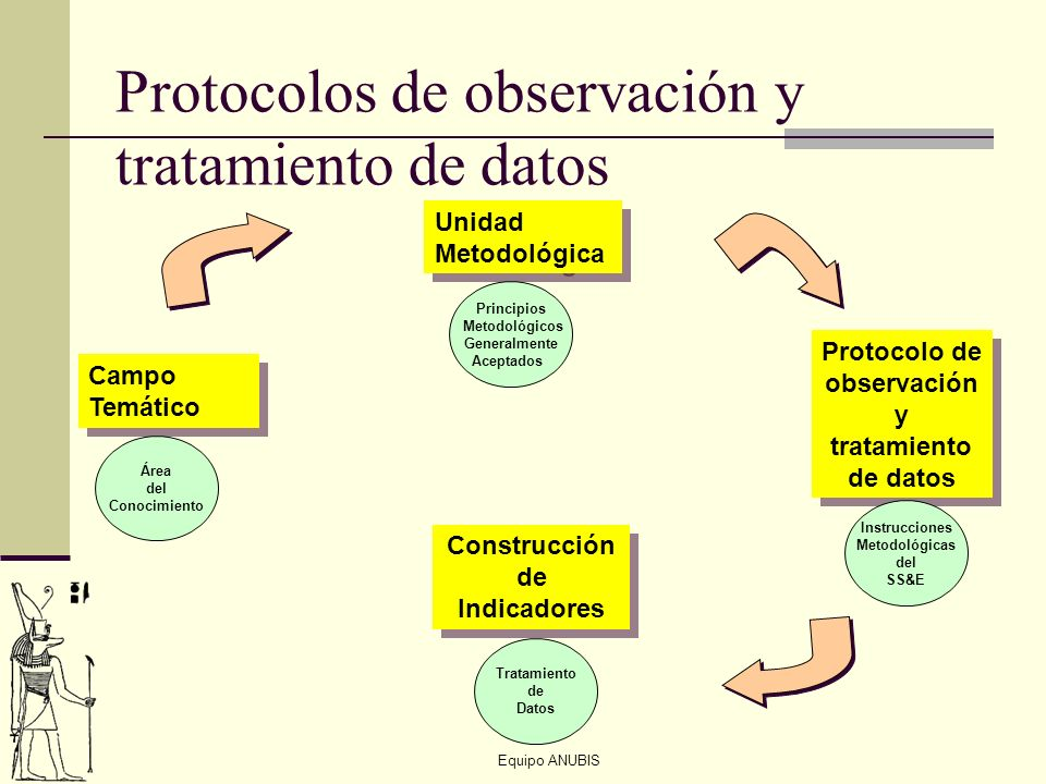 Protocolos de observación y tratamiento de datos