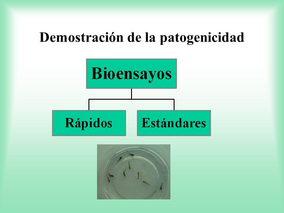 Demostración de la patogenicidad