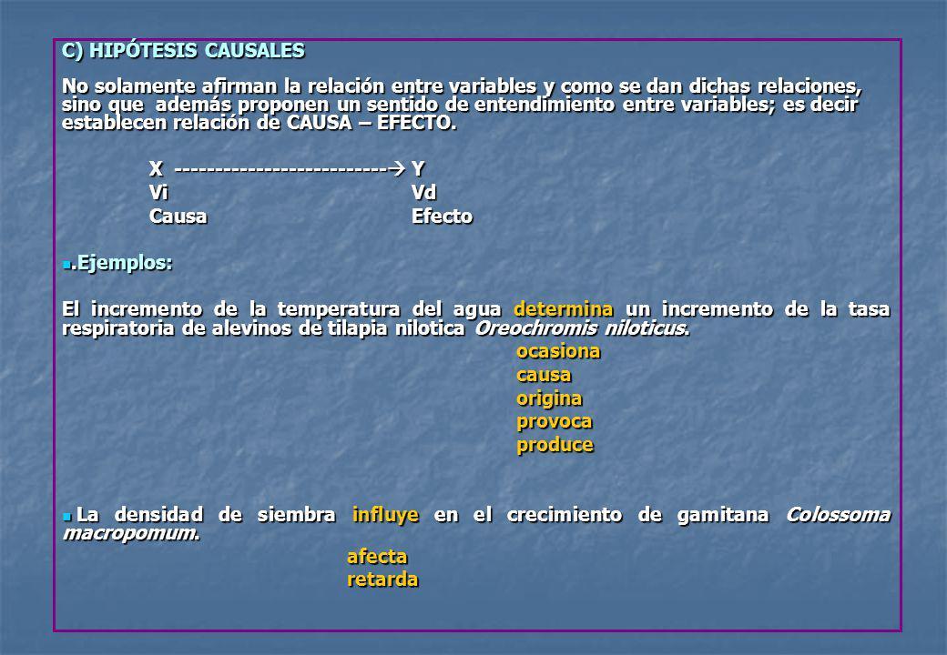 C) HIPÓTESIS CAUSALES