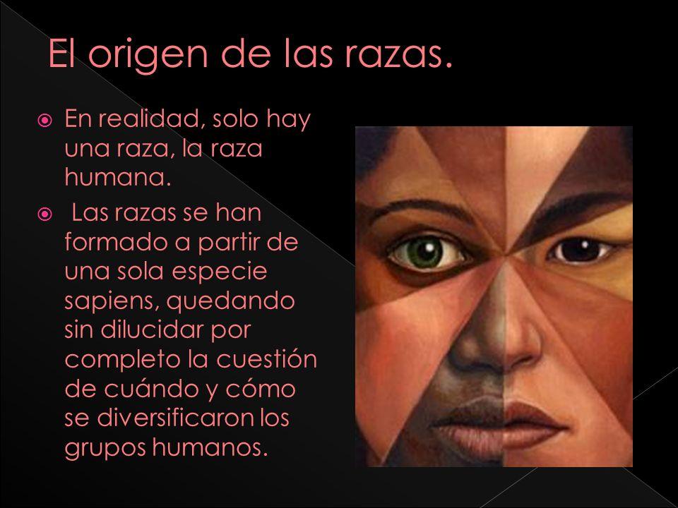 El origen de las razas. En realidad, solo hay una raza, la raza humana.
