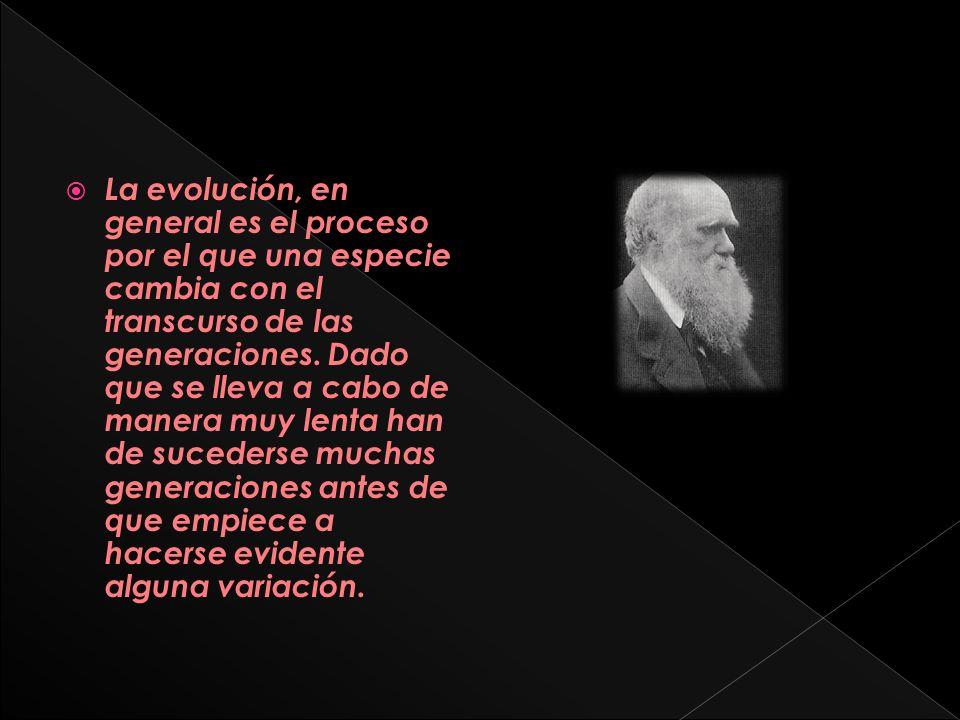 La evolución, en general es el proceso por el que una especie cambia con el transcurso de las generaciones.