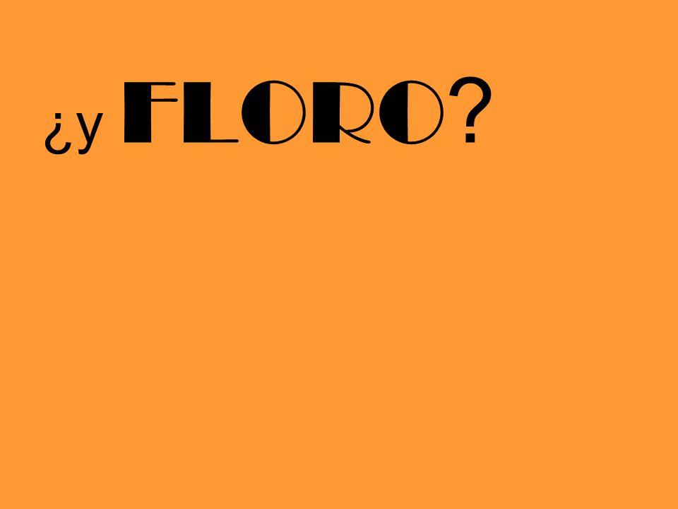 ¿y FLORO