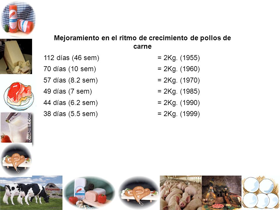 Mejoramiento en el ritmo de crecimiento de pollos de carne