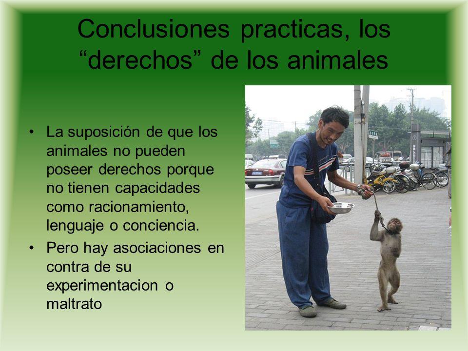 Conclusiones practicas, los derechos de los animales