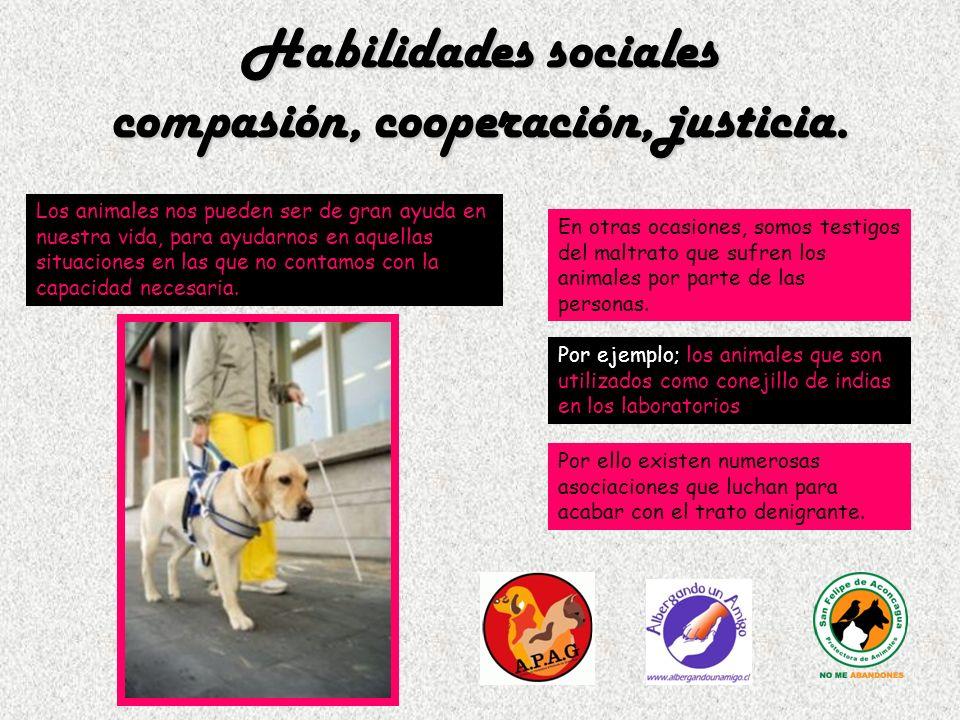 Habilidades sociales compasión, cooperación, justicia.
