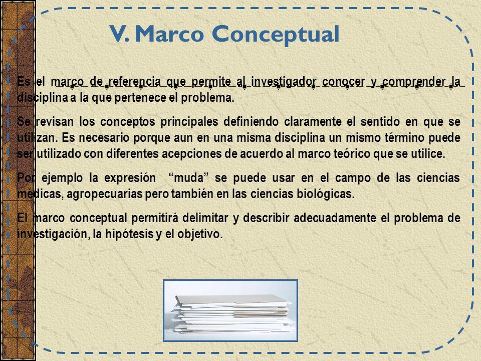 V. Marco Conceptual Es el marco de referencia que permite al investigador conocer y comprender la disciplina a la que pertenece el problema.