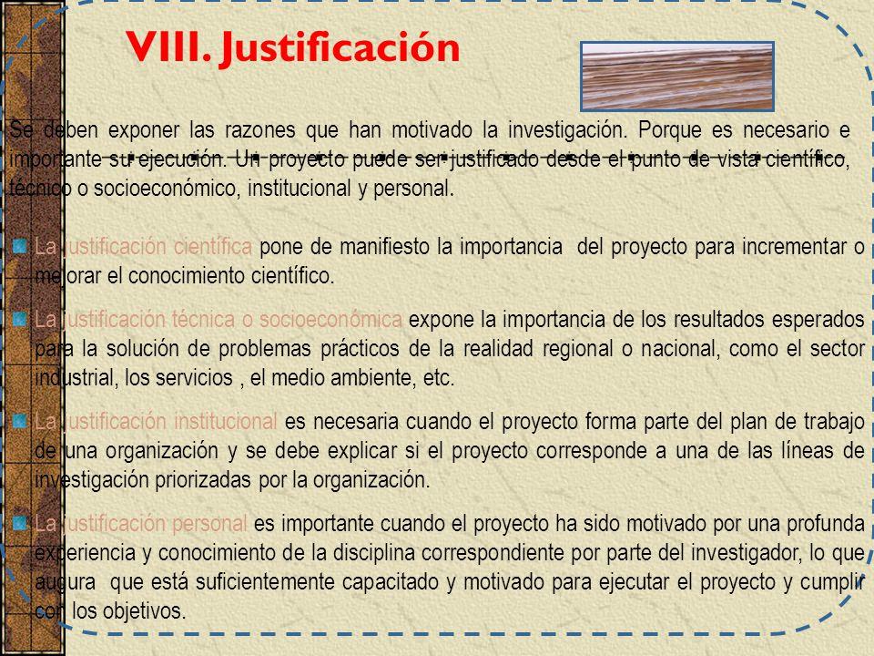 VIII. Justificación