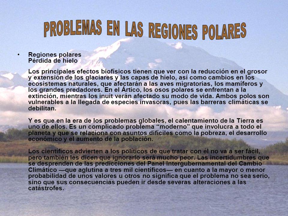 PROBLEMAS EN LAS REGIONES POLARES
