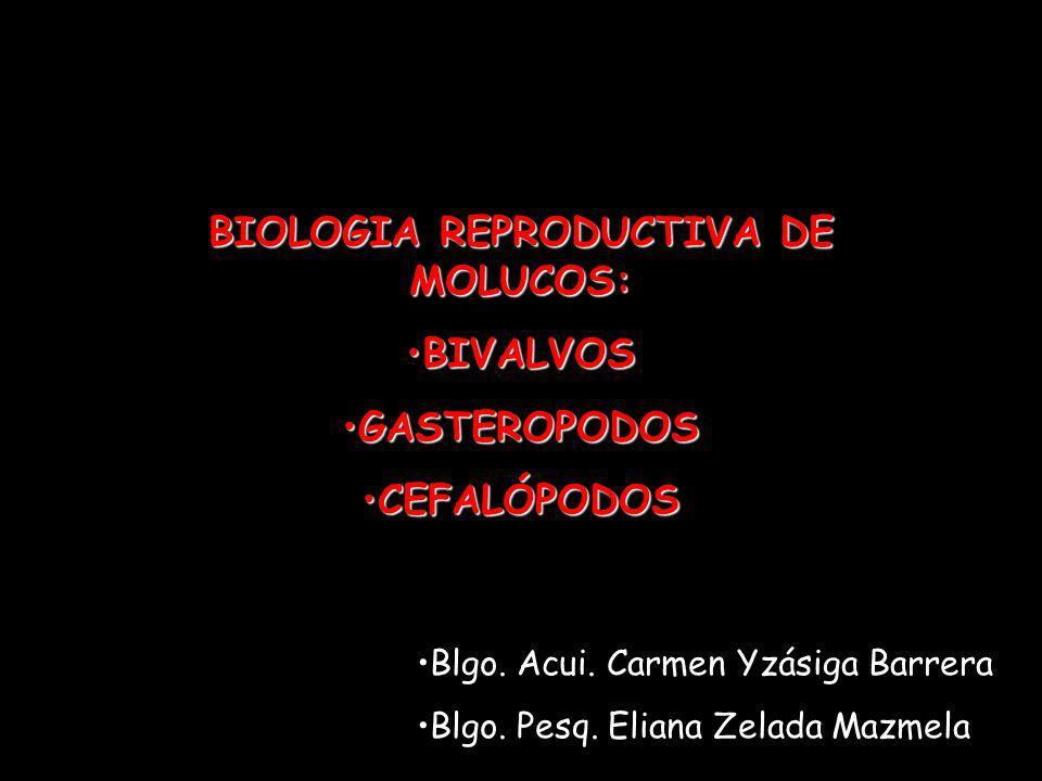 BIOLOGIA REPRODUCTIVA DE MOLUCOS: