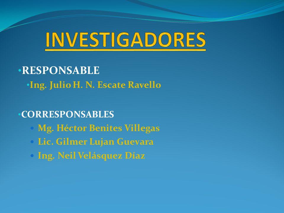 INVESTIGADORES RESPONSABLE Ing. Julio H. N. Escate Ravello