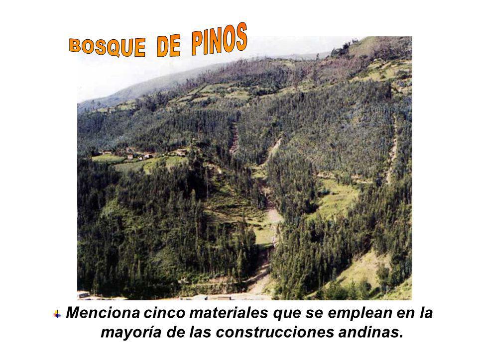 BOSQUE DE PINOS Menciona cinco materiales que se emplean en la mayoría de las construcciones andinas.