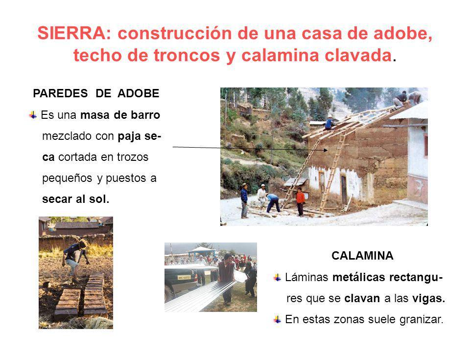 SIERRA: construcción de una casa de adobe, techo de troncos y calamina clavada.