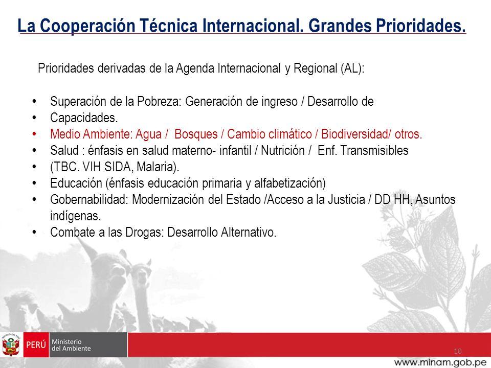 La Cooperación Técnica Internacional. Grandes Prioridades.