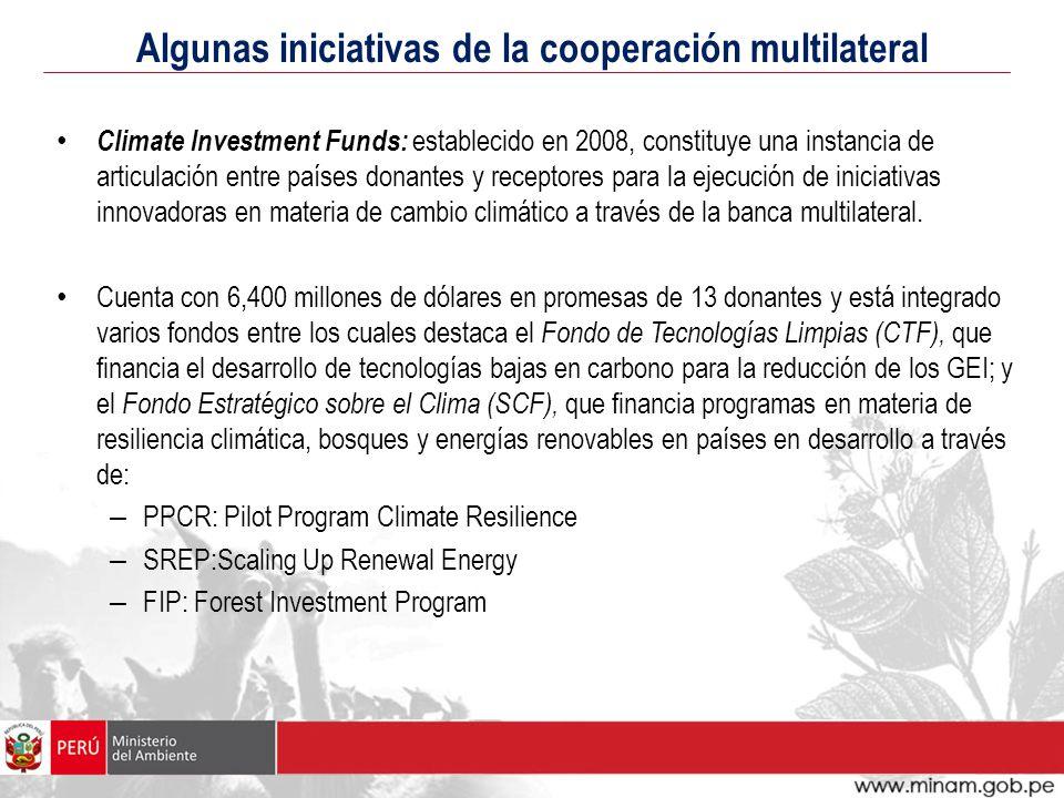 Algunas iniciativas de la cooperación multilateral