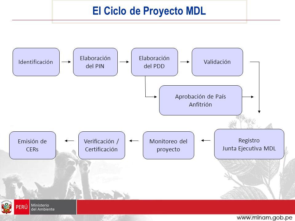 El Ciclo de Proyecto MDL