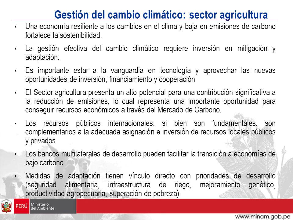 Gestión del cambio climático: sector agricultura