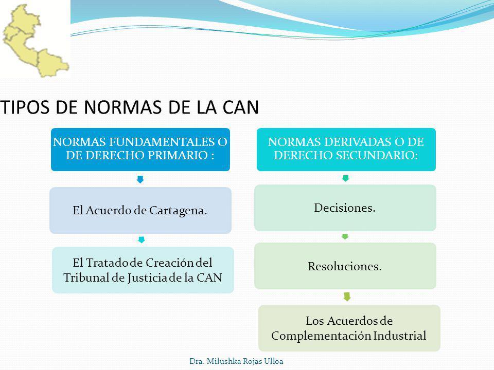 TIPOS DE NORMAS DE LA CAN
