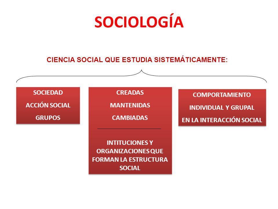 SOCIOLOGÍA CIENCIA SOCIAL QUE ESTUDIA SISTEMÁTICAMENTE: SOCIEDAD