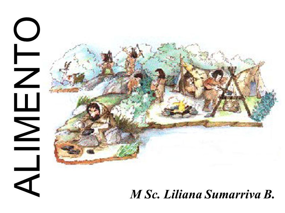 M Sc. Liliana Sumarriva B.
