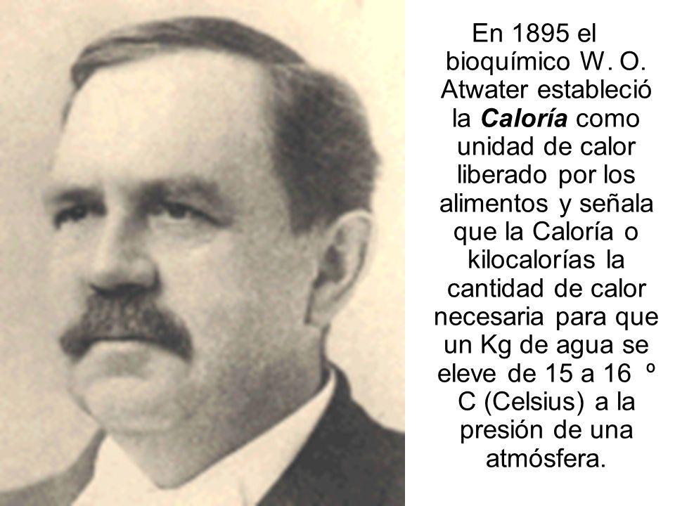 En 1895 el bioquímico W. O.