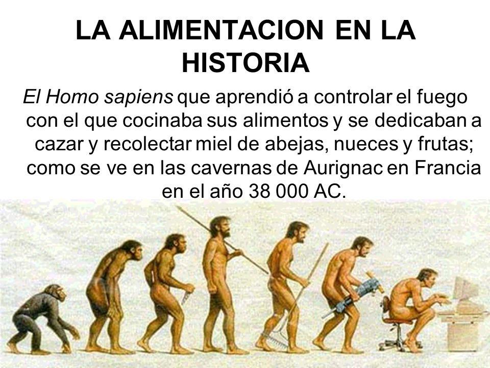 LA ALIMENTACION EN LA HISTORIA