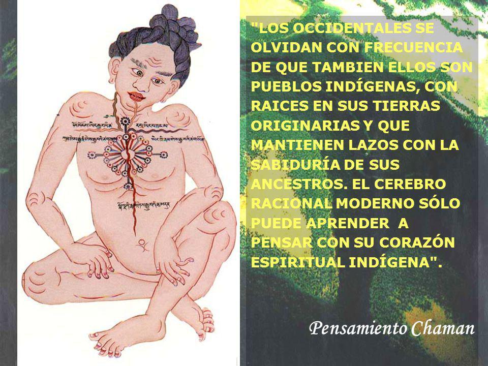 LOS OCCIDENTALES SE OLVIDAN CON FRECUENCIA DE QUE TAMBIEN ELLOS SON PUEBLOS INDÍGENAS, CON RAICES EN SUS TIERRAS ORIGINARIAS Y QUE MANTIENEN LAZOS CON LA SABIDURÍA DE SUS ANCESTROS. EL CEREBRO RACIONAL MODERNO SÓLO PUEDE APRENDER A PENSAR CON SU CORAZÓN ESPIRITUAL INDÍGENA .