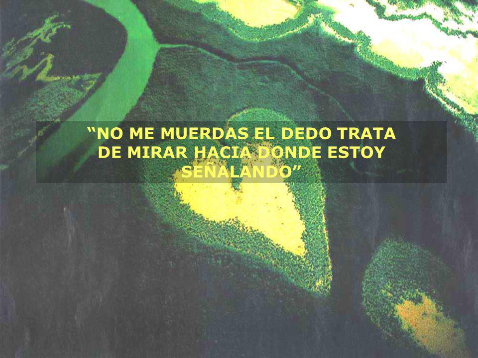NO ME MUERDAS EL DEDO TRATA DE MIRAR HACIA DONDE ESTOY