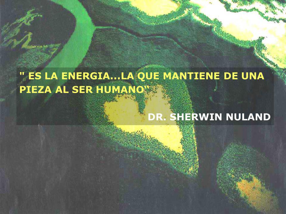 ES LA ENERGIA...LA QUE MANTIENE DE UNA PIEZA AL SER HUMANO