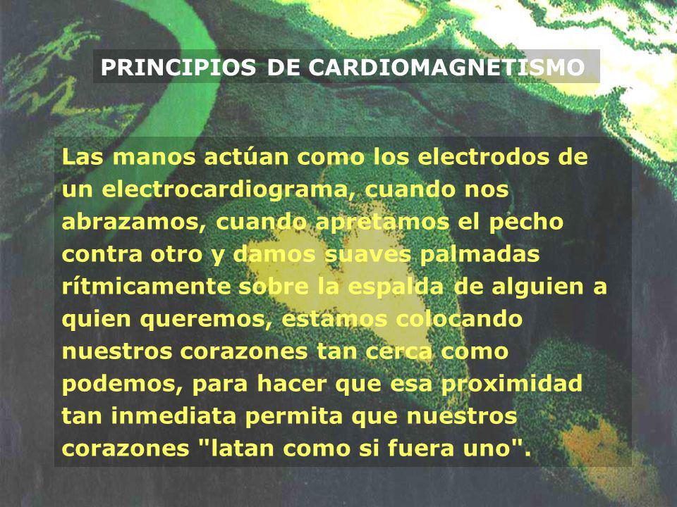 PRINCIPIOS DE CARDIOMAGNETISMO