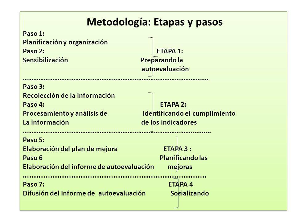 Metodología: Etapas y pasos