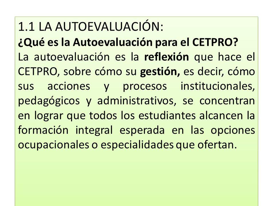 1.1 LA AUTOEVALUACIÓN: ¿Qué es la Autoevaluación para el CETPRO