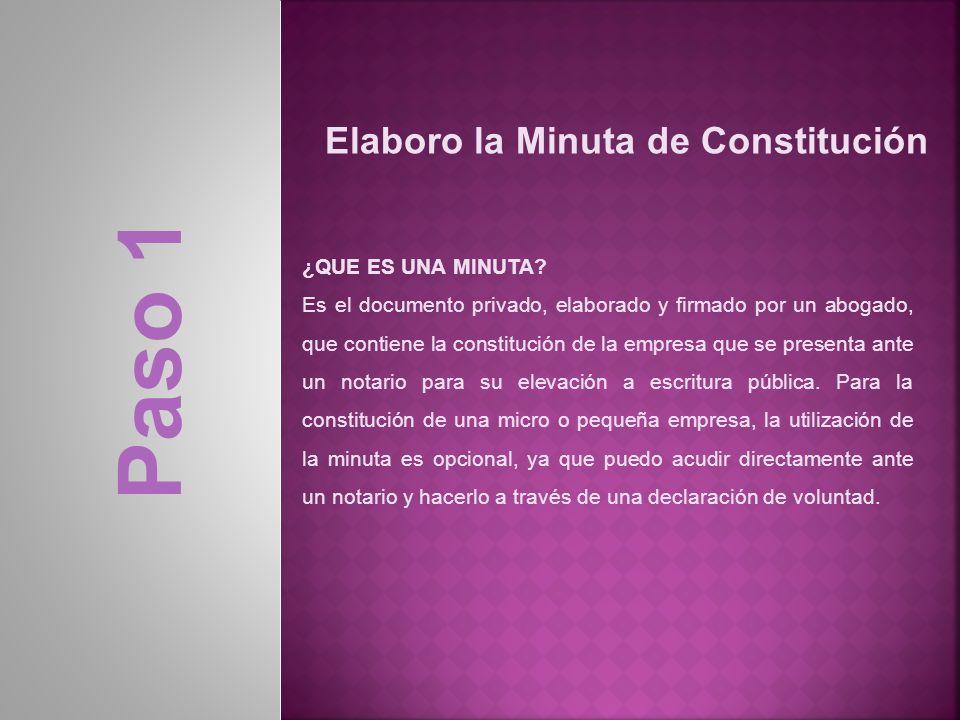 Paso 1 Elaboro la Minuta de Constitución ¿QUE ES UNA MINUTA