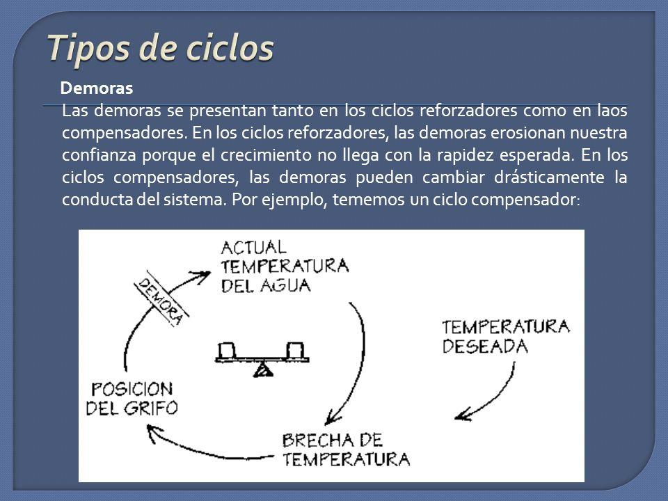 Tipos de ciclos Demoras