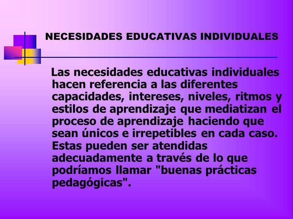 NECESIDADES EDUCATIVAS INDIVIDUALES