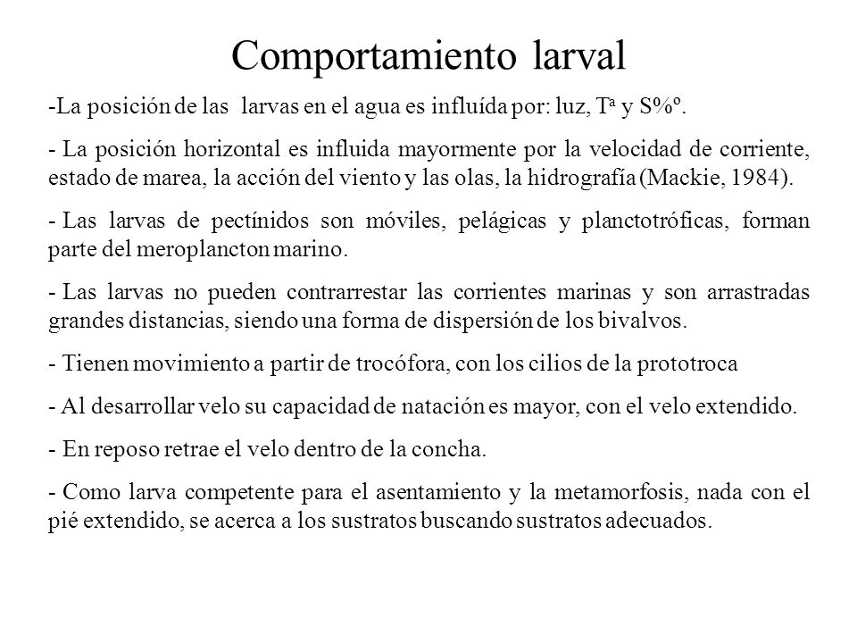 Comportamiento larval