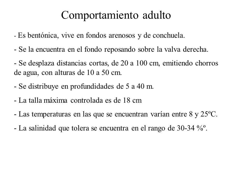 Comportamiento adulto